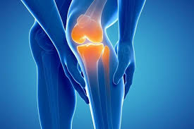 Knee Active Plus - Pris -nyttigt - apoteket